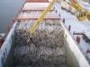 andante_pollitputkikontit_02_2011_019__kopio