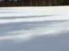 Lumituiskun taidetta Ahopellon pellolla 1.4.2020