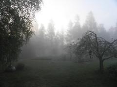 2.6.2012 aamullaklo5.30