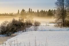 Talvijahtipäivä