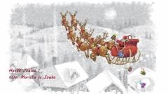 helin_2019_joulukortti