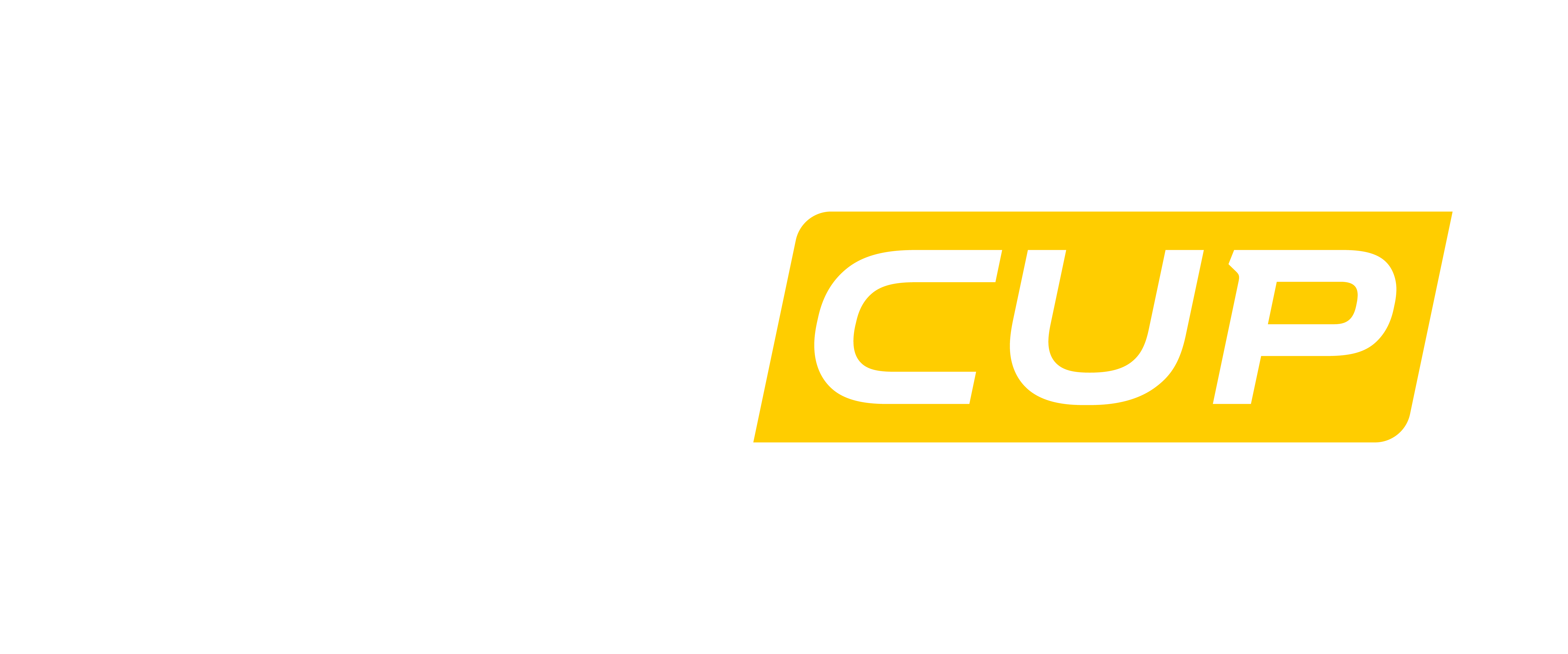 R_RENAULT_SPORT_Sign_CLIO_CUP_Sweden_A_negative_RGB_V1_002.png