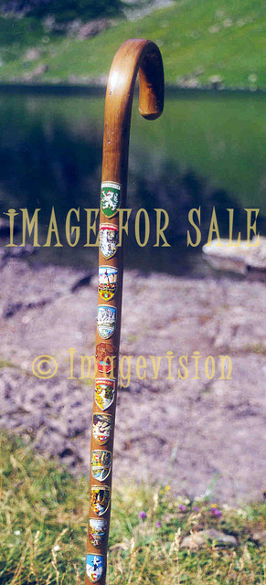 for sale mountain hikers walking stick