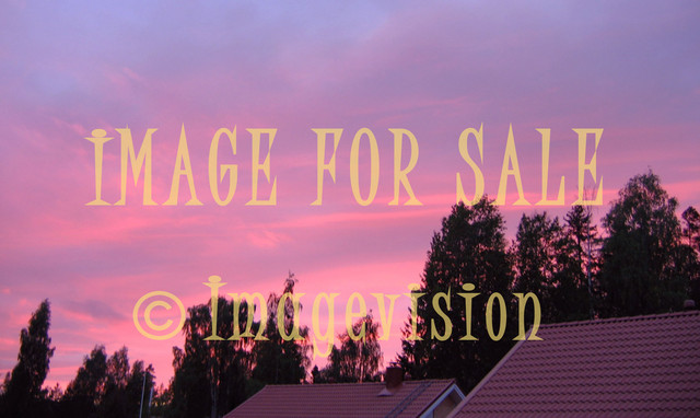 for sale red evening sky silhouette