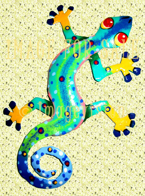 for sale colourful lizard on wall
