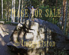 for sale boy concurred a big rock