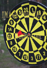 for sale bulls eye in darts