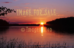 for sale midsummer sun