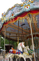 for sale horses of merry-go-round