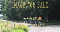 for sale dutch cycling group