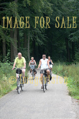 for sale holiday bikers in veluwe