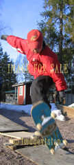 for sale skateboarding in winter