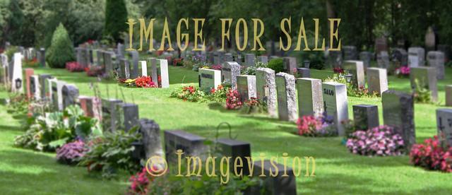 for sale peaceful graveyard in sunlight