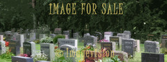 for sale peaceful graveyard view_canvas art