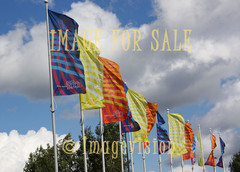 for sale espoo 550 flags
