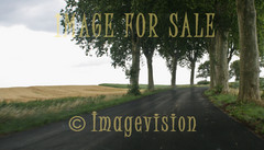 for sale beautiful road along french fields