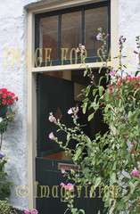 for sale traditional dutch double-door