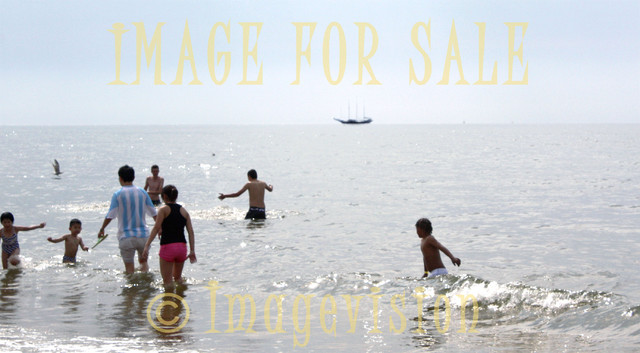 for sale swimmers and open sea