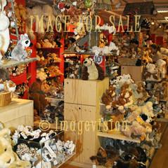 for sale soft teddies world