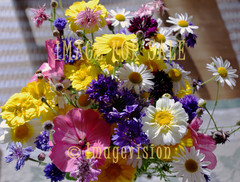 for sale selection of pretty summer flowers