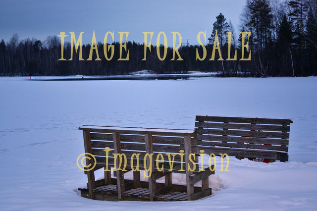 for sale winter lake and two empty benches