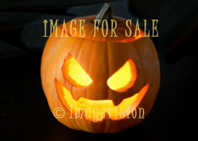 for sale halloween style pumpkin