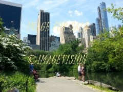 for_sale_central_park_and_skyscrapers
