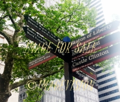 for_sale_new_york_street_signs