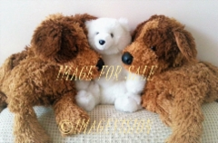 for sale teddy bears
