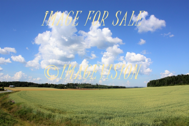 finnish_farm_fields_and_bright_sky