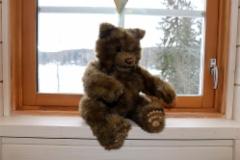 Iso Karhu ikkunalla