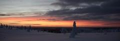 Lapland, Winter, Ivalo, Finland, Ivalotrek