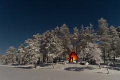 Northern Lights Camp January 2014