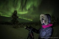 Aurora Tarja