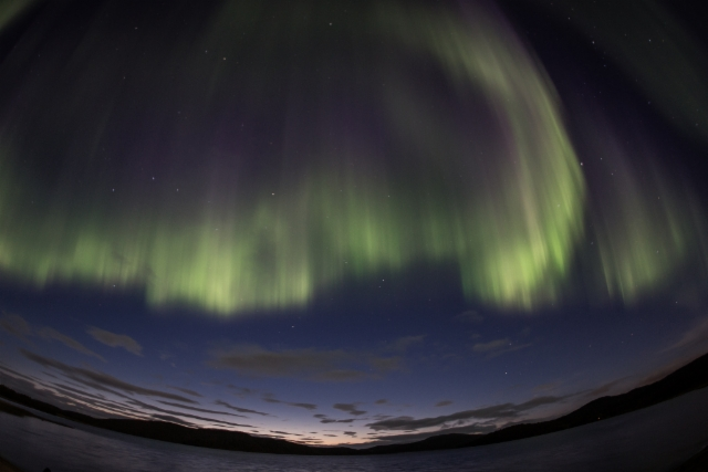 auroras-7545