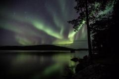 Aurora September