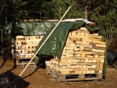23.10.2011 Jätepuut pilkottuina takkapuiksi