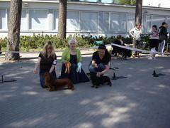 26.5.2012 Milla Sert & Vsp --> FI MVA
