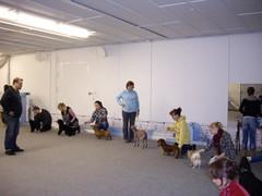 12.11.2012 Näyttelyharkat Tuusulassa