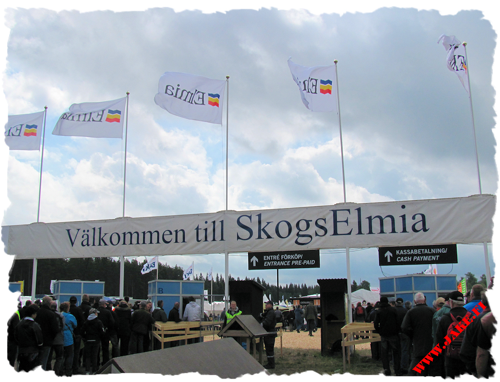 a_welcome_to_skogselmia_2011.jpg