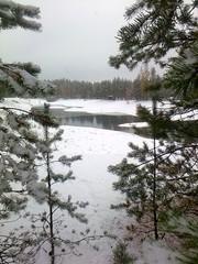Lampi_talvella
