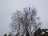 Suomen lippu salkoon