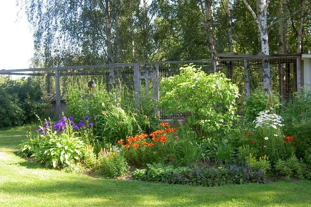 Riku ja kukat elokuu 2005