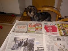 Miro lukee Kalevaa 21.1.2008