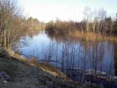 Temmesjoki 15.4.2005