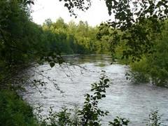 temmesjoki 1.7.2008