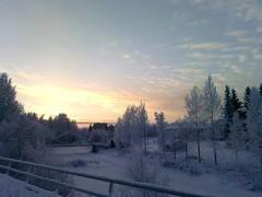 Talvea 2011