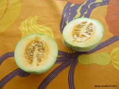 Itse kasvatettu meloni, kesä 2011