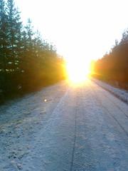Kännykästä: marraskuun aurinko
