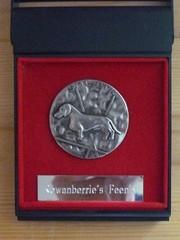 Noran hopeinen käyttöjalostuspalkinto
